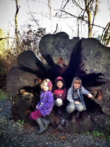 Little Navigators at Goldstream Park